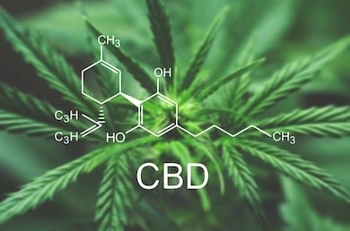 What Benefits May I Experience From CBD?
